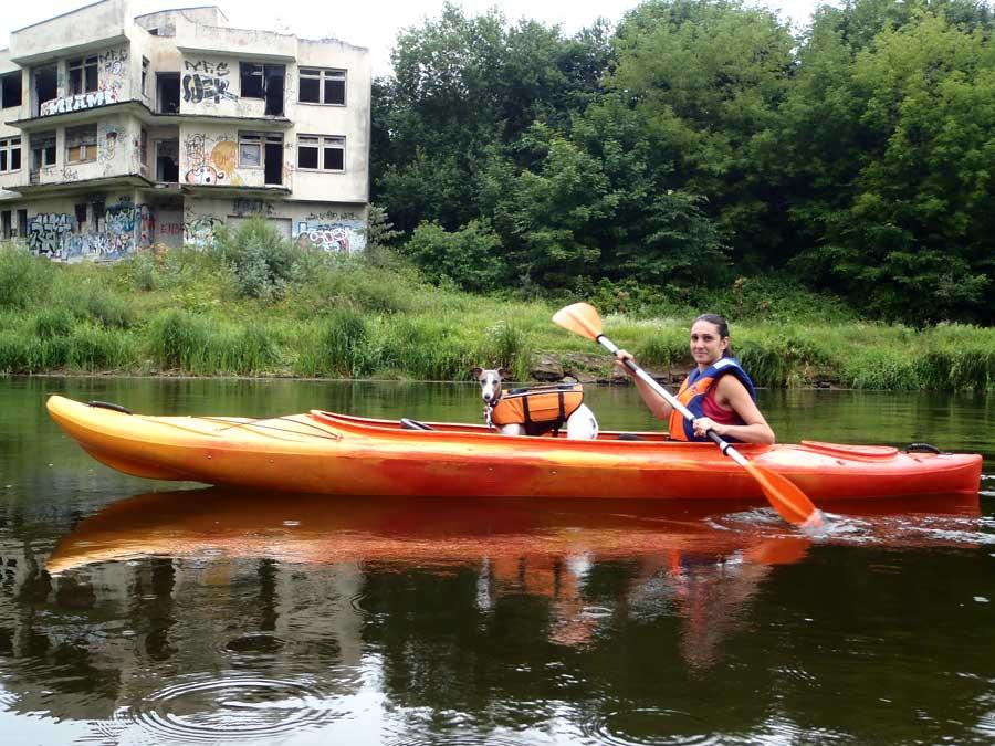 dog socialisation kayaking in vilnius