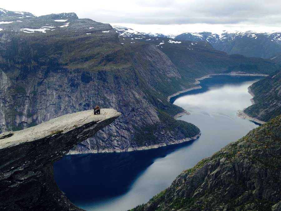 travelling with dogs trolltunga norway