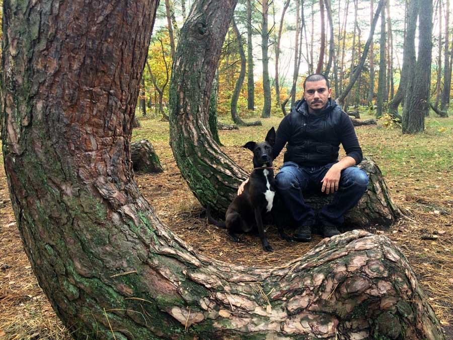 travelling with pets nowe czarnowo poland