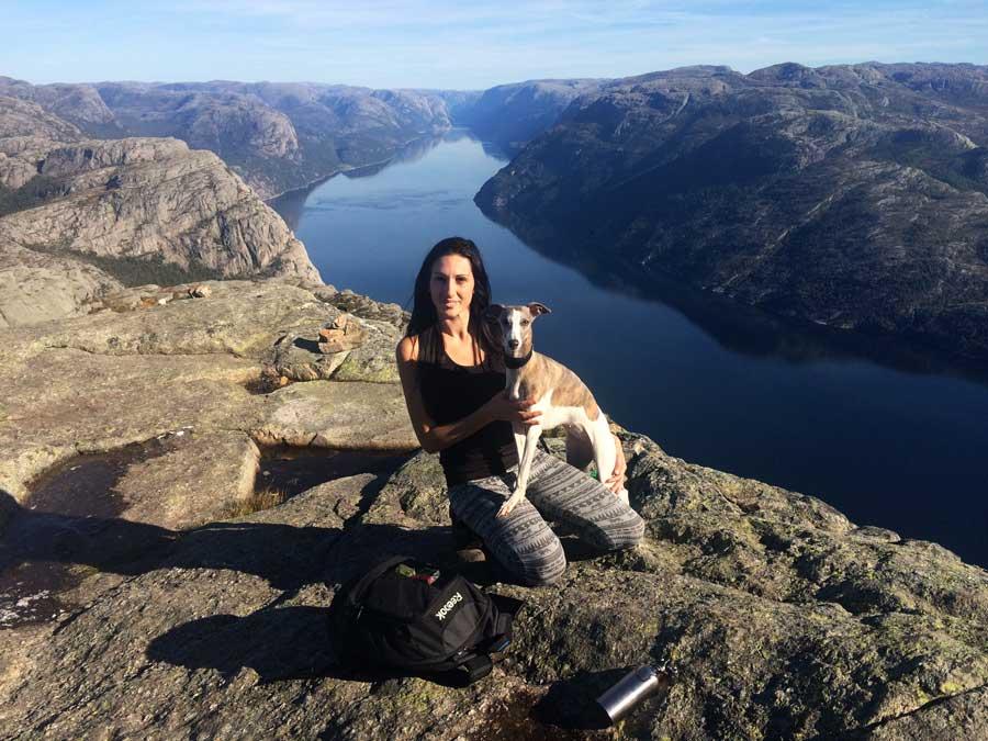 travelling with pets preikstolen pulpit rock norway